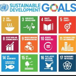 UNDP: The Sustainable Development Goals, adopted on 25 September 2015 as a part of the 2030 Agenda, Quelle: https://www.undp.org/content/undp/en/home/sustainable-development-goals.html